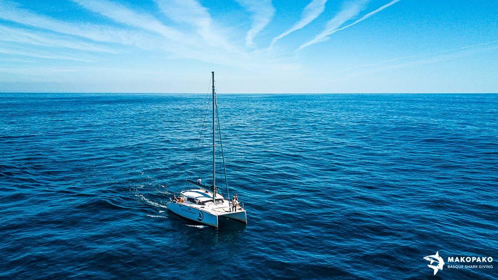 Catamarán para el avistamiento de tiburones en el cantábrico