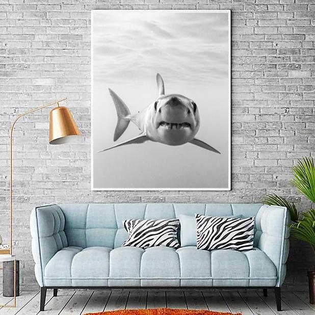 Fotografía decorativa de tiburones Mako Pako 1